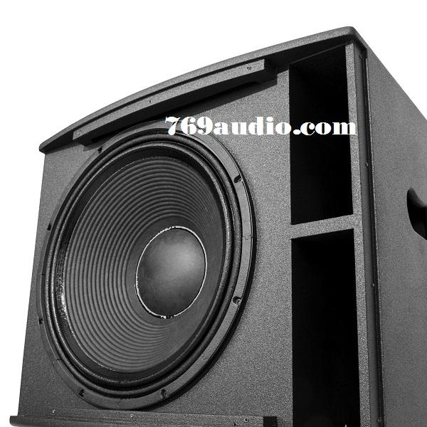 Mặt Bass loa Paramax PRO X18
