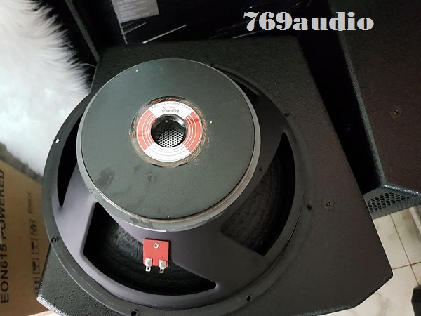 Củ bass loa Soundking F2215